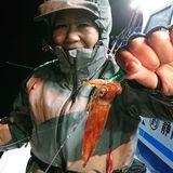 釣果情報・2月10日(月)沼津沖深夜マルイカ